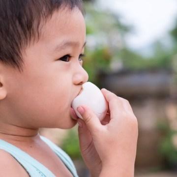 La carne, los huevos y las aves juegan un papel clave en la mejora de la nutrición