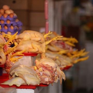 Sector avícola peruano estima pérdidas de 1,600 millones de soles por COVID-19