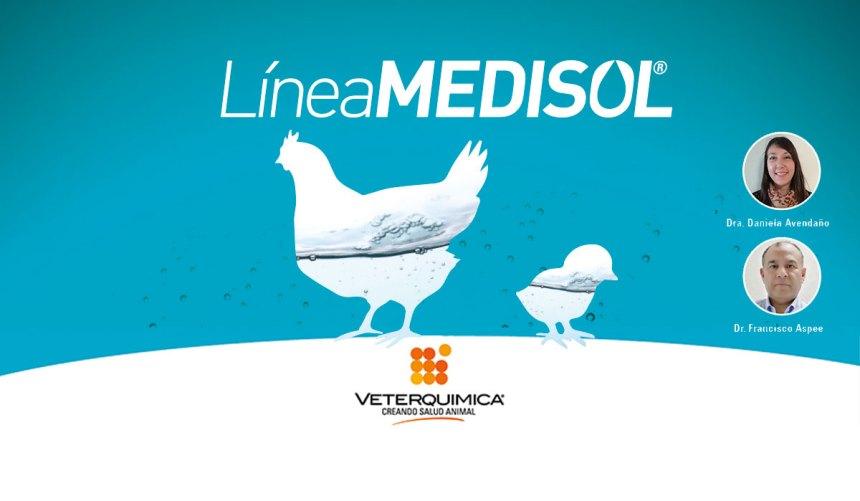 Veterquimica presentó MEDISOL, su línea soluble para la avicultura