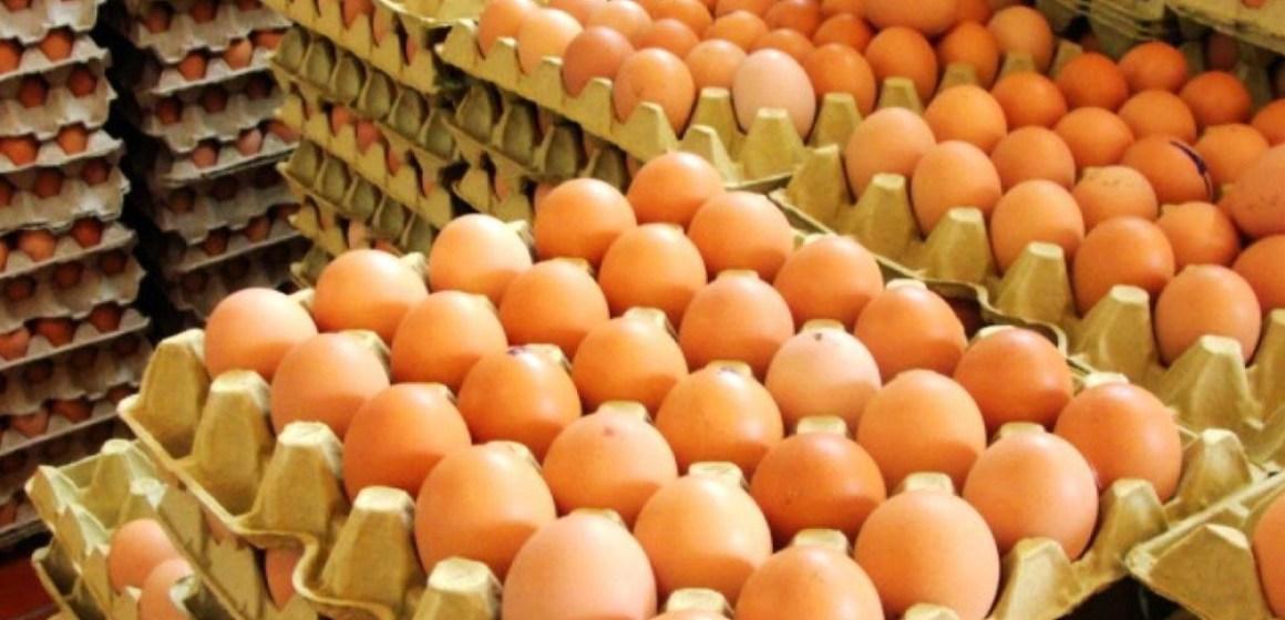 Subsector productivo de huevos de gallina creció 1.9% en enero