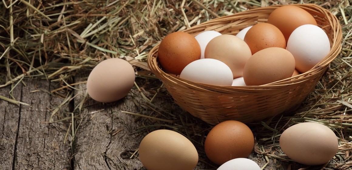 Estrategias ganadoras para aumentar la venta de huevos