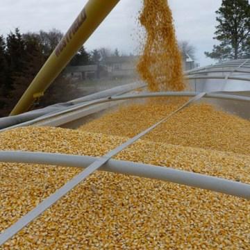 México marca récord de importaciones de granos y oleaginosas