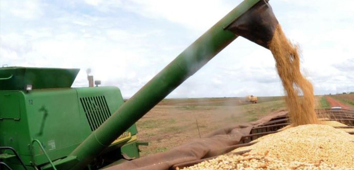 Brasil: segunda cosecha de maíz lleva un avance de solo 58%