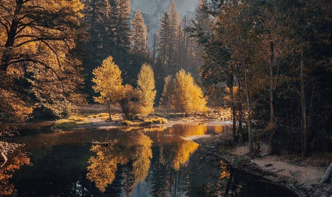 Une série d'automne par  @philngyn