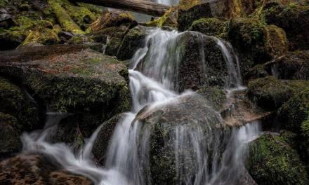 Cascade à Proxy Falls …