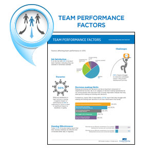 Team Performance Factors Infographic