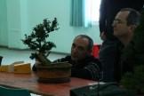 atelier ascap 2012 - 13
