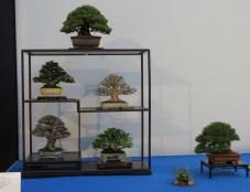 noelanders trophy 2013 - 49