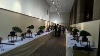 exposition - kokufu ten 2013 -4