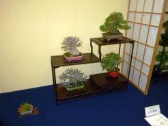 38th Gafu-ten in Kyoto 2013 - 32