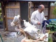 bois morts juniperus - sablage par takeo kawabe 3