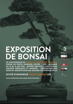 Affiche_EXPO_BONSAI_A3_FINAL_[1024x768]