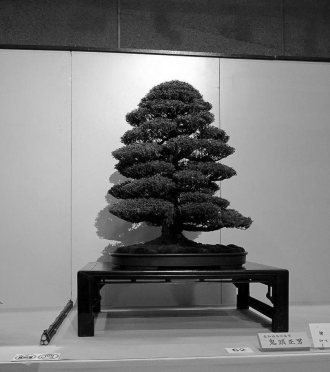 NB kokufu-ten 2013 - 36