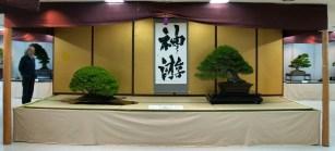 ryokufu ten 05