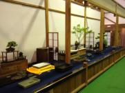exposition bonsai japon 04 masato yamakami