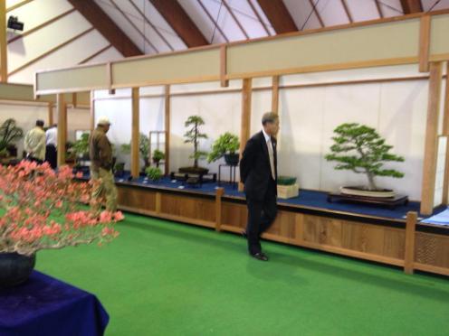 exposition bonsai japon 05 masato yamakami