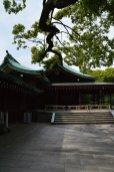 visite au sanctuaire meiji tokyo - 03