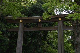 visite au sanctuaire meiji tokyo - 05