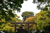 visite au sanctuaire meiji tokyo - 06