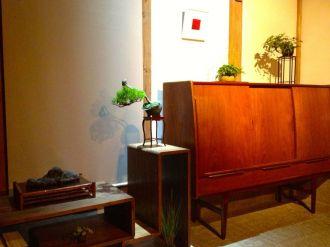 bonsai mori exposition 01