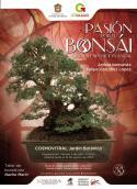 pasion por el bonsai
