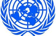 VIRUS ZIKA : l'ONU pour un accès à la contraception et à l'avortement dans les pays touchés
