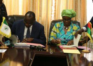 Projet d'interconnexion électrique Nigéria-Niger-Bénin/Togo-Burkina Faso : La BAD met à la disposition du Burkina Faso un montant d'environ 39,37 milliards de FCFA