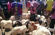 TABASKI 2019: à chacun son mouton selon sa bourse