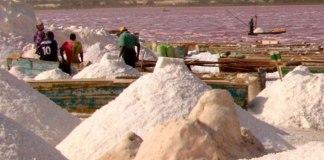 Un commerce de sel non iodé