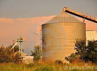 Une usine de décorticage d'arachide