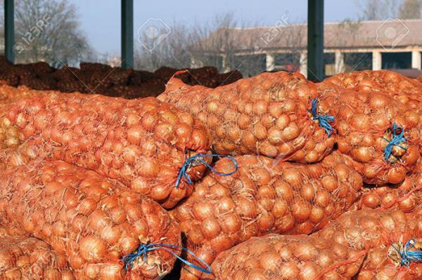 Les importations d'oignon
