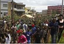 Cameroun, zone anglophone
