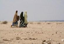 Une crise humanitaire au Sahel