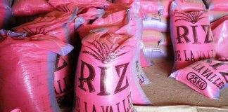 Le Sénégal exportateur de riz