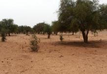 Une attaque au Niger fait 17 morts