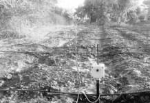 Système d'irrigation sur mesure