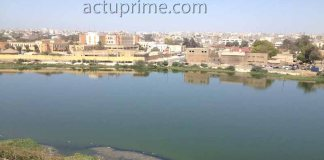 Les odeurs et les moustiques de la zone de captage de Dakar