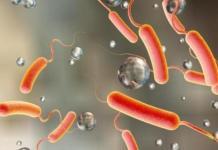 Une épidémie de choléra de nouveau en Algérie