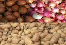 L'oignon et la pomme de terre difficiles à trouver