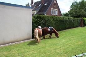 2014-05-11-fete-communale-haplincourt060