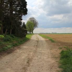 2015-04-29-le-livre-des-duquesnoy-revient-a-haplincourt06