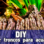 DIY como curar troncos y raíces para acuarios