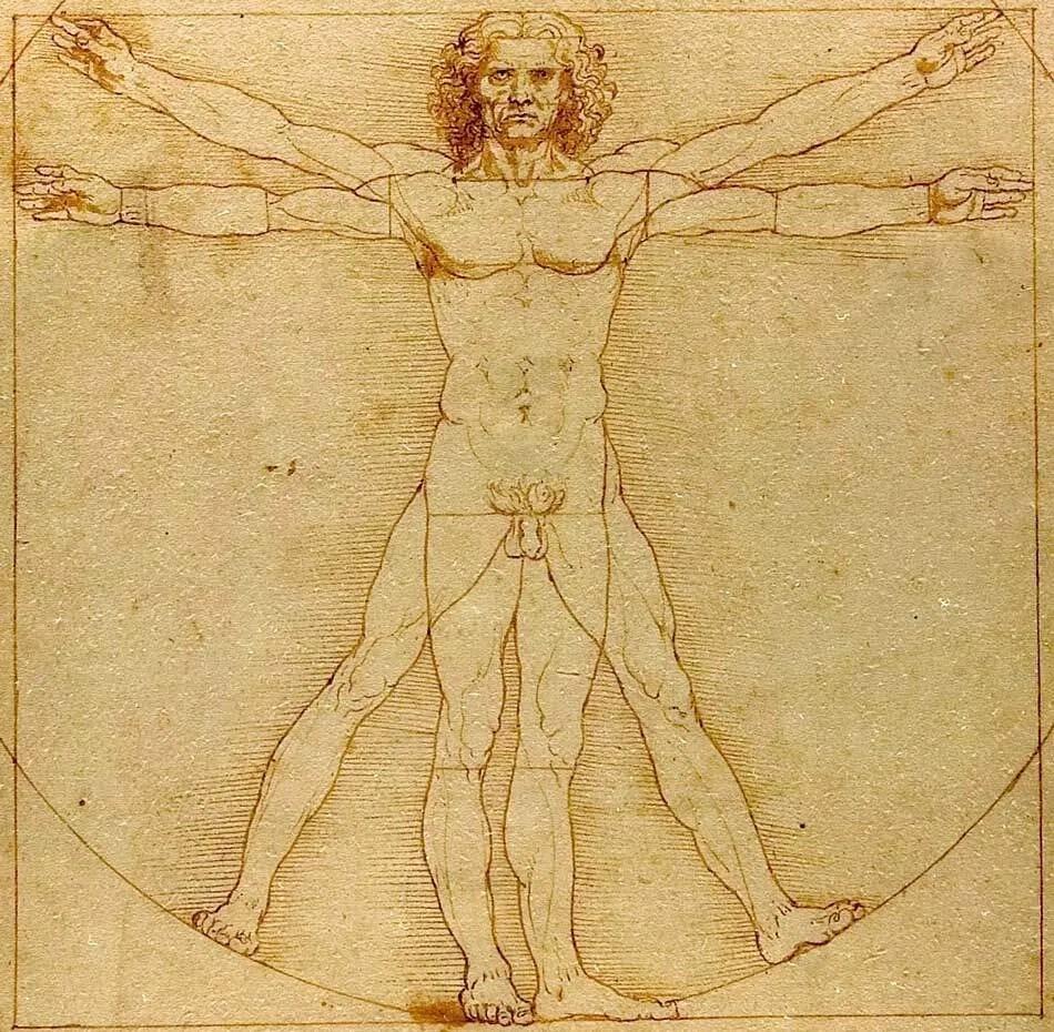 fisiologia acufene