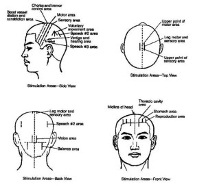 Scalp Acupuncture Map