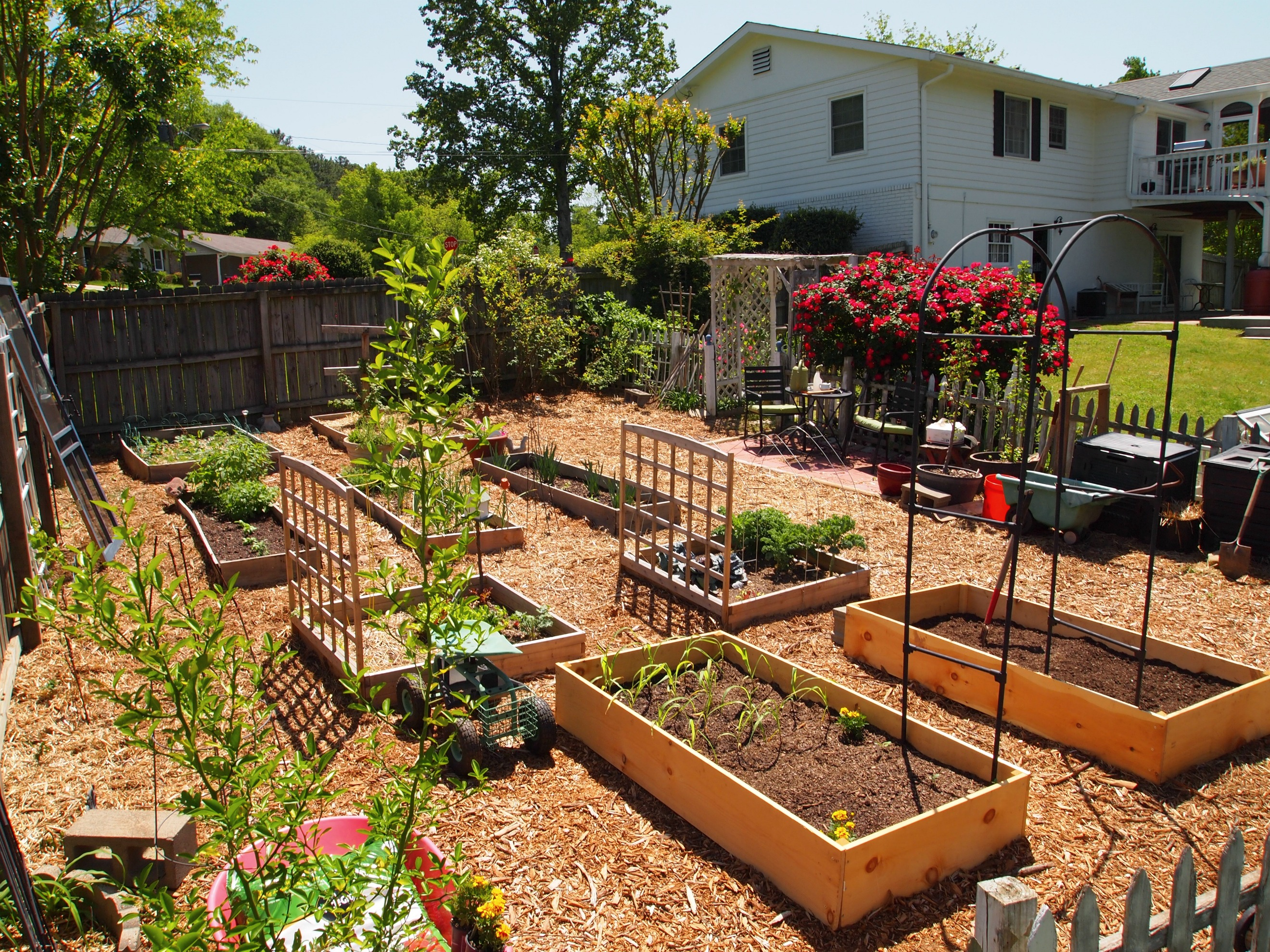 What Will My Garden Grow? - A Cultivated Nest on Outdoor Vegetable Garden Ideas id=36853