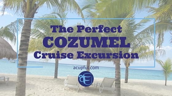 Cozumel Cruise Excursion from Mandy Carter at Acupful.com