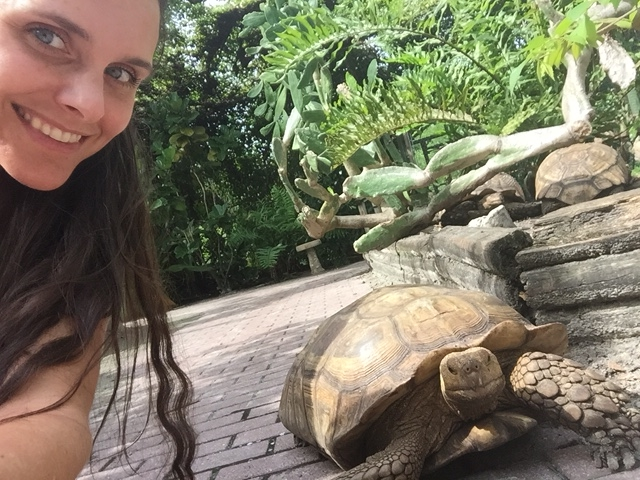 mandy carter selfie with tortoise at the shell factory fort myers, fl #familytravel