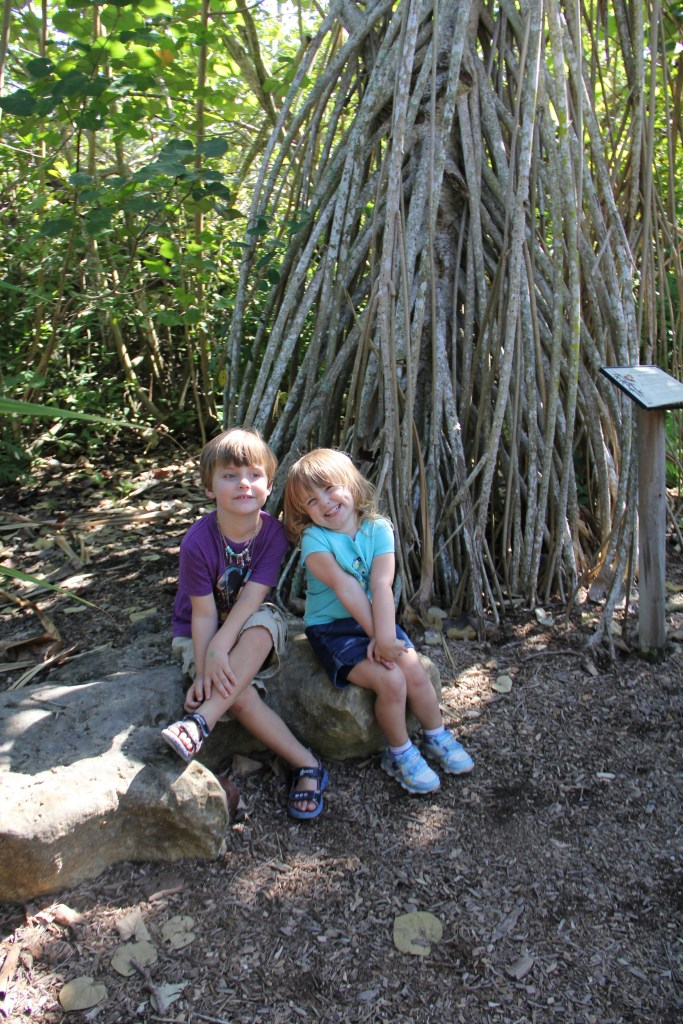 Zoo in Naples, Fl - a cupful of carters - things to do with kids in Southwest Florida