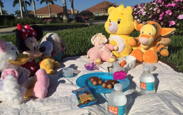 Teddy soft baked snacks on Ibotta