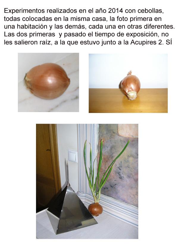con_cebollas_2014